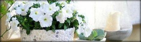 DYI Flowerpot